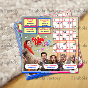 Baby Shower Housie Tickets | Baby Shower Housie Game