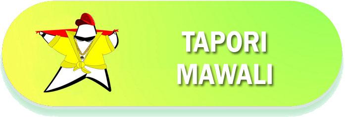 Tapori